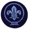 WOSM badge klein